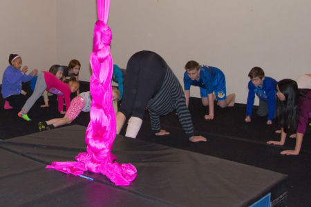 Dragonfly Aerial Arts Studio 14