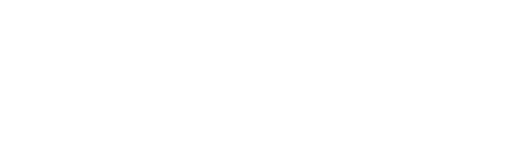 The Knoxville Mercury