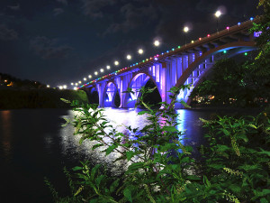 NEWS_bridge_0702