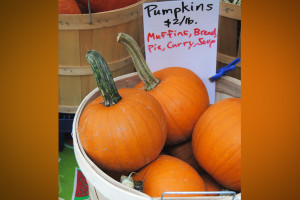 FOOD_1022_Pumpkin2