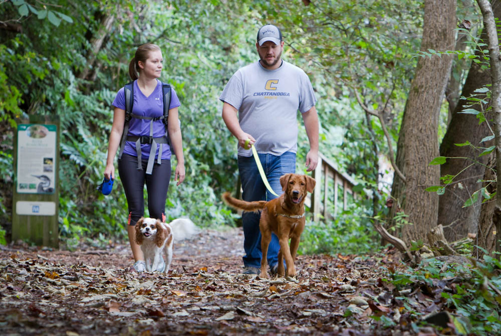 T.J. Smith, 26, and Alyssa Birmingham, 25, of Knoxville, walk their pups along the River Trail at Ijams Nature Center on Weds., Sept. 30, 2015. Photo by Clay Duda.
