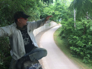 Local attorney/environmental activist Chris Irwin is organizing a new mural project near the Third Creek Greenway.