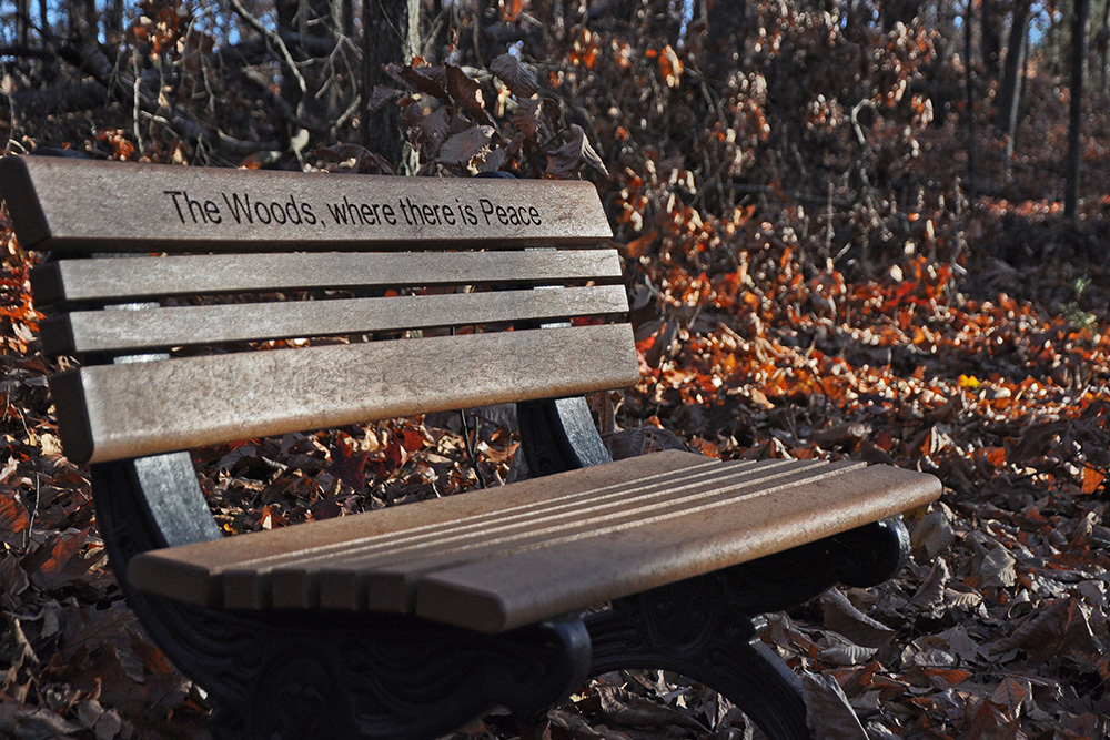 About a half-mile in on the Meadow Loop Trail at Fort Loudoun State Historic Park, this bench reinforces a trailrunning mantra.